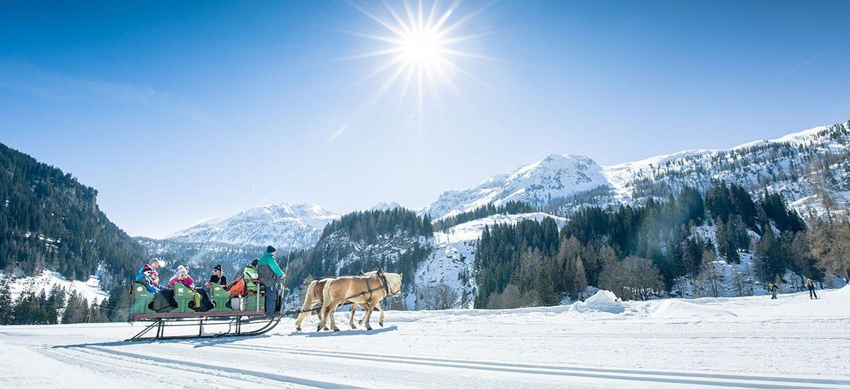 Pferdeschlittenfahrten - Aktiv-Winterurlaub