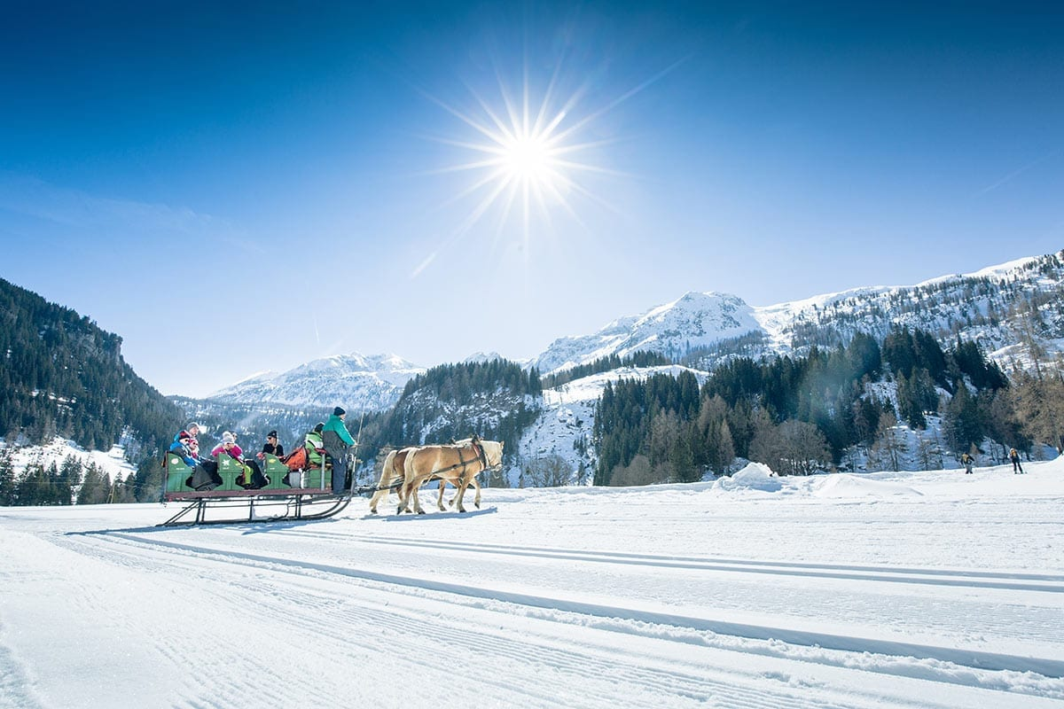 Pferdeschlittenfahrten - Freizeitmöglichkeit in Obertauern