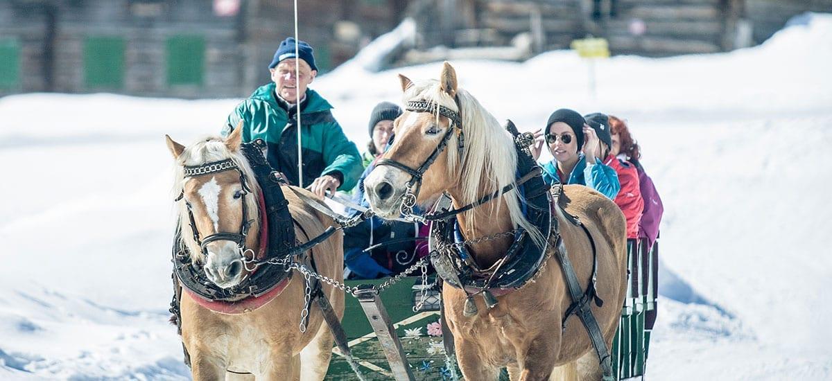 Pferdeschlittenfahrten - Familien-Winterurlaub