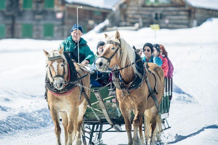 Pferdeschlittenfahrten auf der Gnadenalm